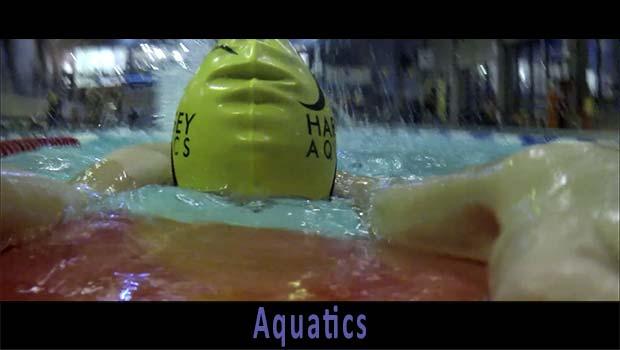 Aquatics Video Link